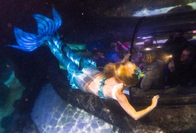 Advanced Mermaid Course