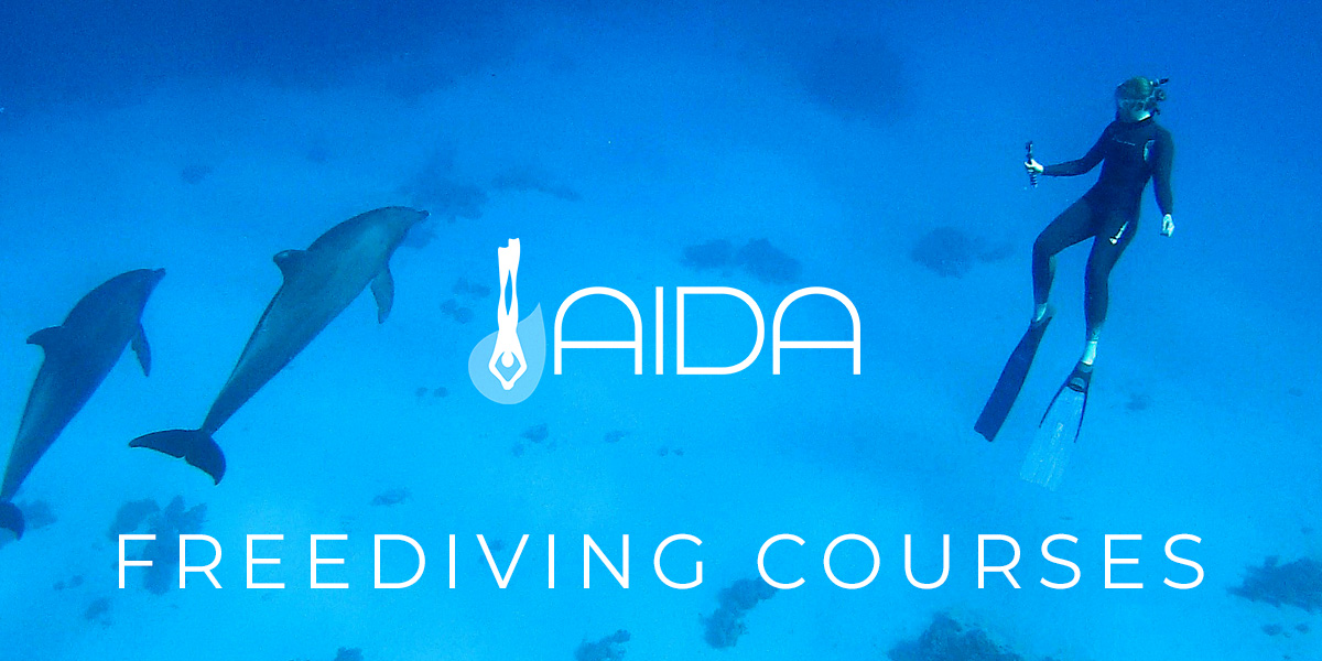 AIDA Freediving Courses in the UK