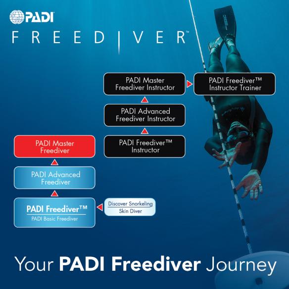 PADI flow chart