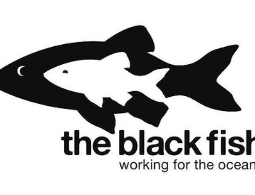 The Black Fish Club talk