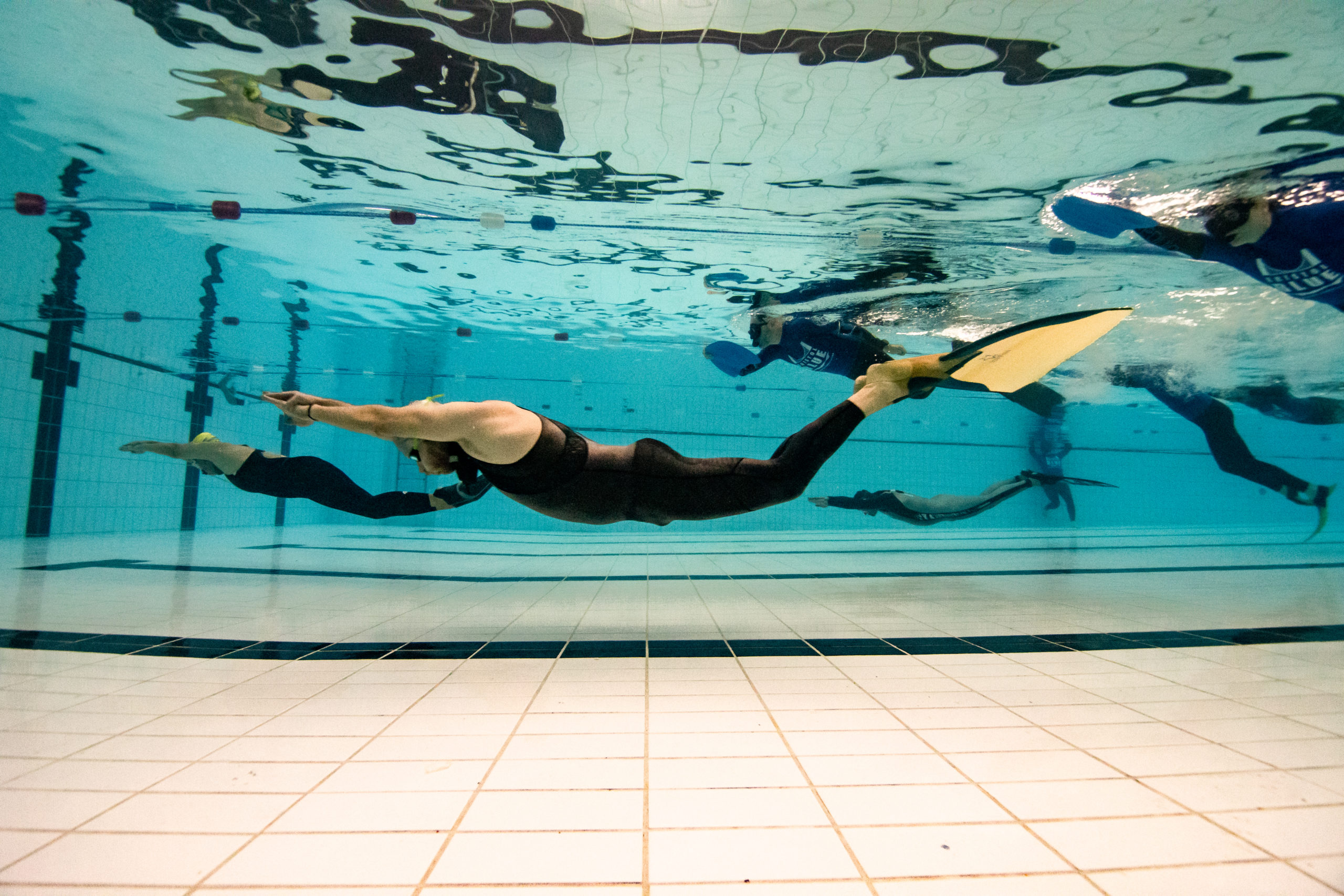 Freediving competition in Bristol