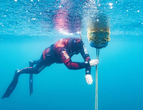 Capernwray dive centre – freediving training site