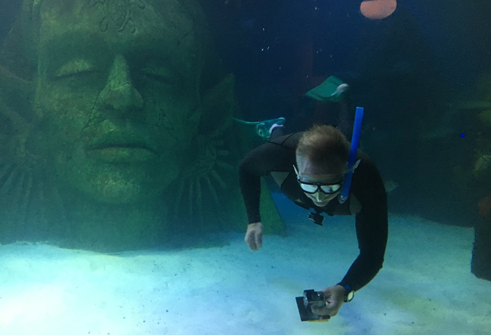 Snorkelling Courses UK