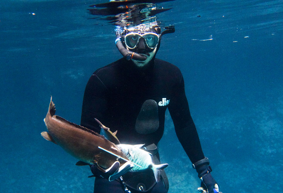 Spearfishing & Foraging Courses